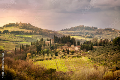 Fotografiet  Chianti vineyards in Tuscany, Italy.