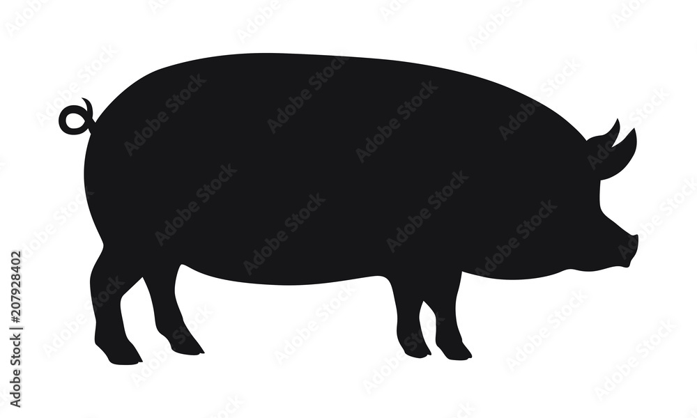 Fototapeta Pig graphic icon. Pig black silhouette isolated on white background. Vector illustration