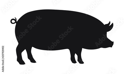 Fotomural  Pig graphic icon