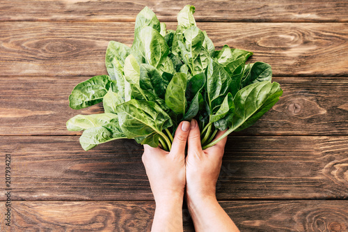 spinach bunch of a girl in hands on a wooden background, detox, fresh vegetables