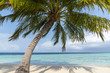 Panoramic view of a wild tropical beach in southern part of Maldives in sunny day.