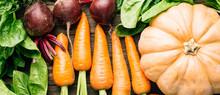 Carrots, Beets, Spinach, Pumpk...