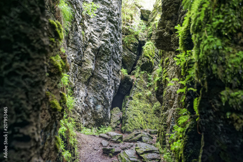 Staande foto Zwart Road trip true the wonderful nature and landscape of Romania