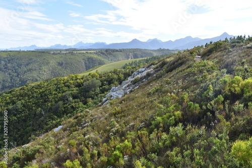 Fotobehang Blauwe hemel Mountainous landscape at Tsitsikamma National Park in South Africa