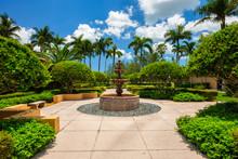 Pretty Coral Gables Garden