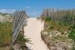 Chemin dans les dunes en Betagne