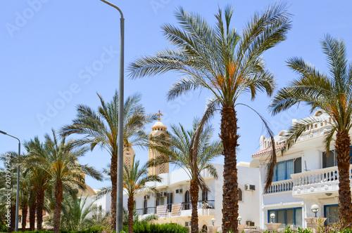 Fototapeta Białe arabskie prostokątne i kwadratowe domki, domy na pustyni z balkonami na tle zielonych palm i piękne błękitne niebo w Egipcie.