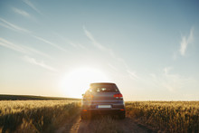 Car In The Field In Summer Sunset