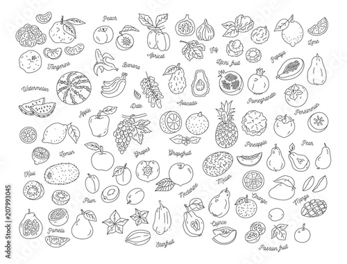 Fruit icon, Hand-drawn set of fruits. Vector flat illustration - 207993045