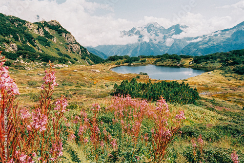Foto op Aluminium Alpen Colorful Alpine Summer Landscape With Small Lake and Flowers Shot on Film
