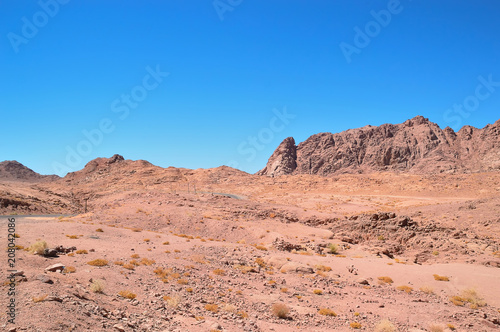 Foto op Aluminium Zalm desert landscape, mountains of red sandstone, a plain covered with rare desert vegetation, a stretch of road with telegraph poles against the background of a cloudless blue sky