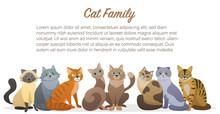 Cute Cartoon Cats Family Stain...