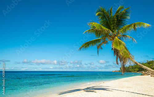 Wall Murals Blue Tropical island beach. Perfect vacation background.