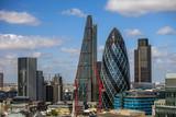 Fototapeta Londyn - london skyline in summer
