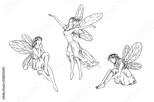Fotografie, Obraz  Beautiful three young fairies dancing, flying in wind and sitting around, hand d