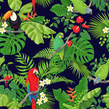 Tropical Birds And Plants Patt...