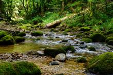 Geroldsau, Wasserfall, Bach