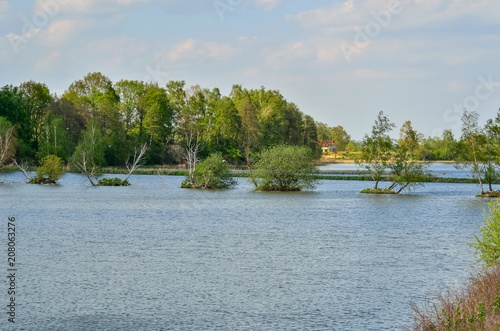 Photo Stands Roe Beautiful rural landscape. Spring day over a beautiful pond.