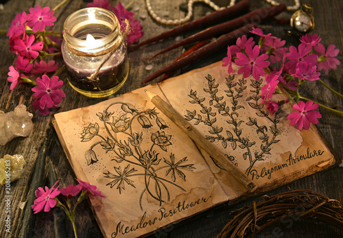 Old diary with drawings of magic herbs, black candles and primula flowers on planks. Occult, esoteric and divination still life. Halloween background with vintage objects