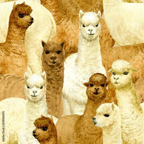 Plakaty na wymiar   alpaca-seamless
