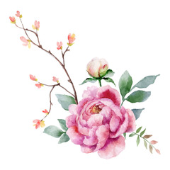 Panel Szklany Podświetlane Peonie Watercolor vector hand painting illustration of peony flowers and green leaves.