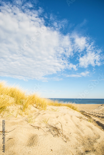 Papiers peints Montagne beach of the Baltic sea with beach grass and park bench in back light