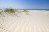 Fototapeta Krajobraz - Dzika bałtycka plaża w Białogórze