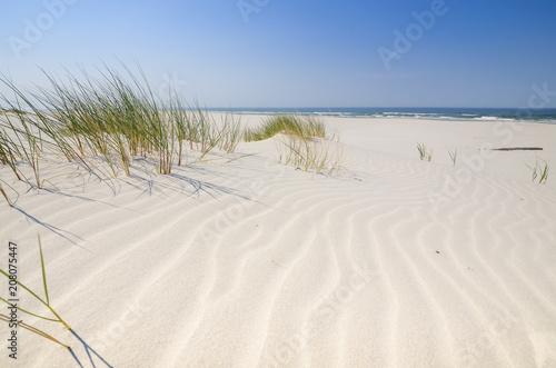 Dzika bałtycka plaża w Białogórze