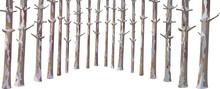 Vector Christmas Evergreen Pine Tree Trunks Set