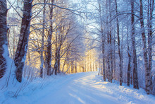 Snowy Road Scene From Sotkamo,...