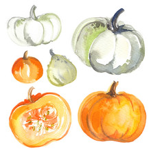 Pumpkins Painted With Watercol...
