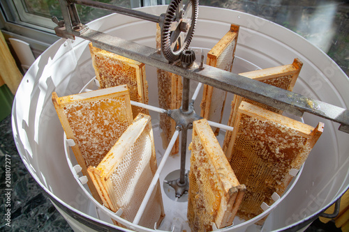 Apiculture - Extraction du miel Canvas Print