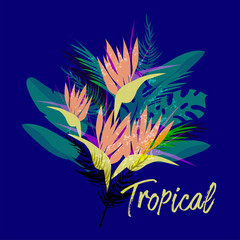 Tropical vector floral collage