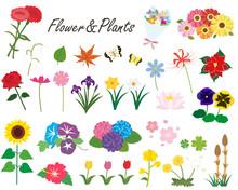 季節の花と植物のイラ...