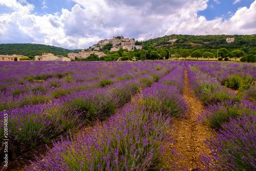 Foto op Plexiglas Lavendel Vue panoramique sur le village de Simiane la Rotonde, Alpes de Haute Provence, france. Champ de lavande au premier plan.