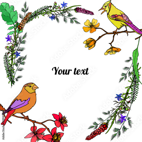 Deurstickers Papegaai Frame of flowers with birds
