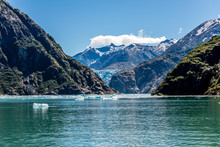 Tracy Arm Fjord's Icebergs, Mountains And Sawyer Glacier