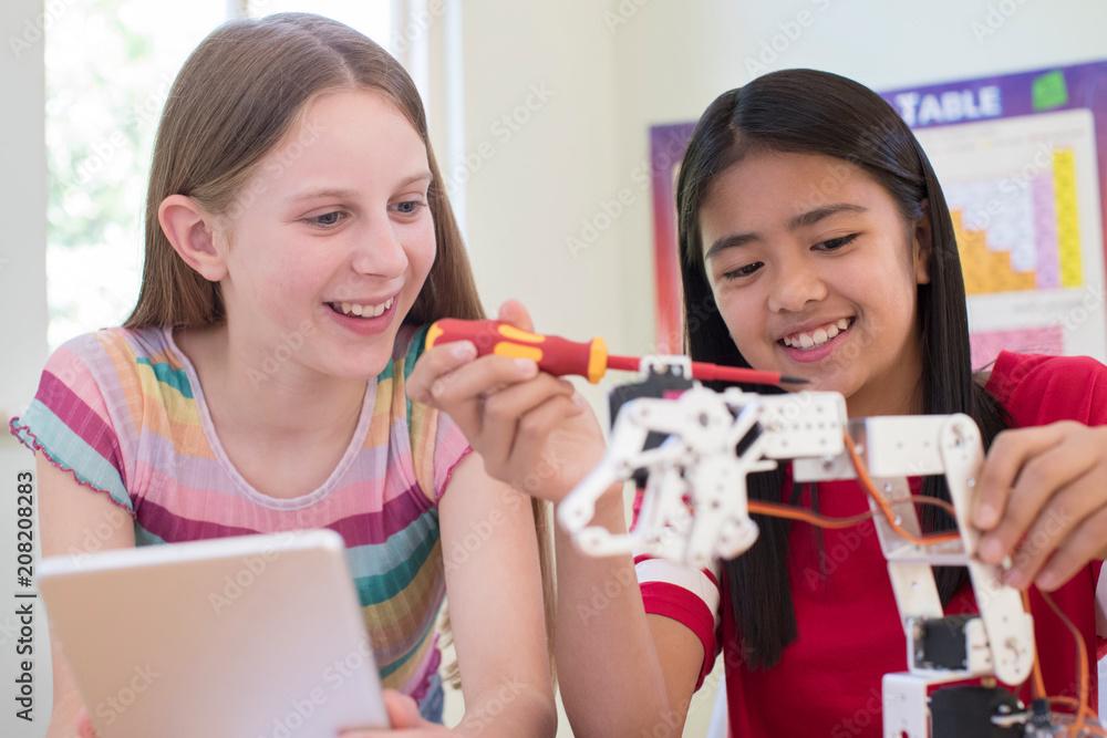 Fototapeta Two Female Pupils In Science Lesson Studying Robotics