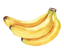 Hand Drawn Watercolor Banana B...