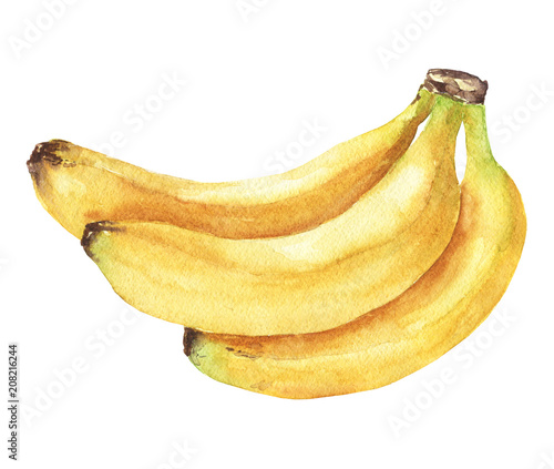 Foto Hand drawn watercolor banana bunch, isolated fruits on white background