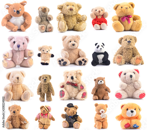 Teddy bear collection