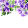 Lilac floral background. Painting lilac flowers. Romantic floral decorative border. Wedding invitation with purple flowers. Floral greeting card.