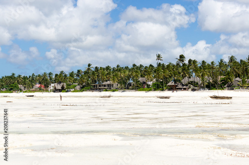 In de dag Zanzibar Tropical beach at low tide in Jambiani, Zanzibar, Tanzania Africazania Africa