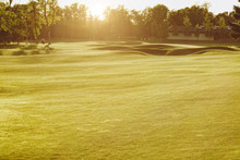 Green Golf Course At Sunset, F...