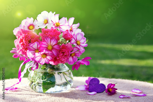 Cosmos flowers bouquet isolated on green background .