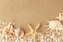 Colorful Shells In The Sand Of A Beach