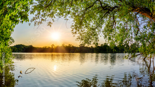 Foto op Plexiglas Beige Lake with trees at sunset on a beautiful summer evening