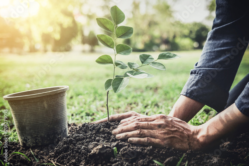 Valokuva  Young man planting the tree in the garden as earth day and save world concept, n