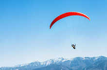 Sportsman On Red Paraglider So...