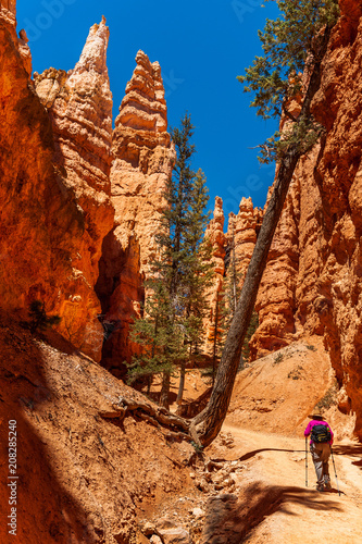 Keuken foto achterwand Rood traf. Hiking the Navajo Trail and the Queens Garden Trail in Bryce Canyon National Park. Navajo Loop and Queen's Garden Trail is a 2.6 mile heavily trafficked loop trail located near Bryce, Utah.